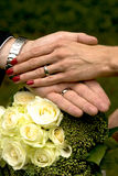 Just married. A just married couple holding hands royalty free stock image