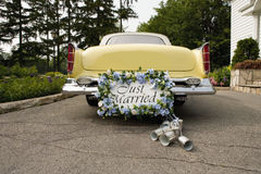 Free Just Married Royalty Free Stock Photo - 8713165