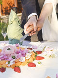 Just married. Couple slicing their wedding cake stock photography