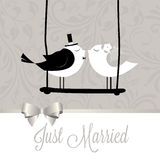 Just married birds Royalty Free Stock Photography