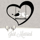 Just married birds Royalty Free Stock Images
