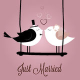 Just Married. Birds on special pink background Royalty Free Stock Photo