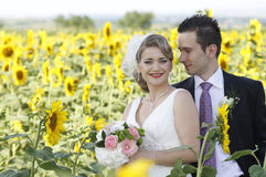 Just married couple. Young attractive wedding couple posing in a sunflower field Stock Photo