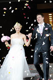 Just married couple. Under a rain of rose petals Royalty Free Stock Image