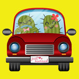 Just married couple of cactus in red car Stock Image