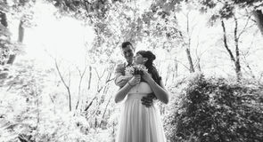 Just married couple embracing under tree at forest Stock Image