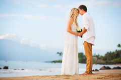 Just married couple holding hands on the beach at sunset Stock Images