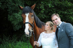 Just married couple with horse stock photos