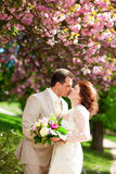 Just married couple kissing Stock Image