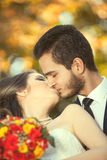 Just married couple kissing on blurred autumn background Royalty Free Stock Photos
