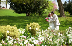 Just married couple kissing in park. Happy just married couple kissing in park with white tulips Stock Images