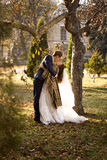 Just married couple kissing passionately under tree at autumn pa Stock Photos
