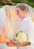 Just married couple kissing on tropical beach Royalty Free Stock Image