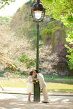Just married couple by lantern Stock Images