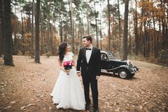 Just married couple in the luxury retro car on their wedding day.  Stock Images