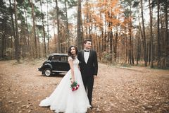 Just married couple in the luxury retro car on their wedding day.  Stock Image