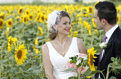 Just married couple in the nature. Happy young couple posing in a field full of sunflowers royalty free stock images