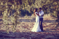 Just married couple in nature background Stock Photo