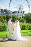 Just married couple in Paris Stock Photography