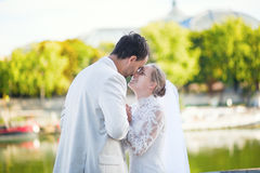 Just married couple in Paris Royalty Free Stock Image