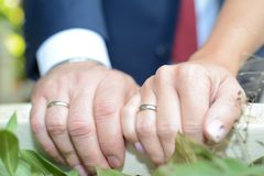 Just married couple showing rings.  Stock Photography