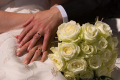 Just married couple showing rings Royalty Free Stock Images