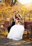 Just married couple sitting on bench at autumn park Royalty Free Stock Image