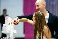Just married couple slice a cake smiling Royalty Free Stock Photos