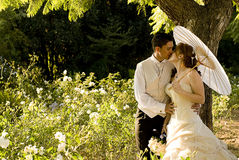 Just married couple standing and kissing. In white flower bed under a tree in nature on a sunny day Stock Photos