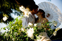 Just married couple standing and kissing in white. Flower bed under a tree in nature on a sunny day Royalty Free Stock Image