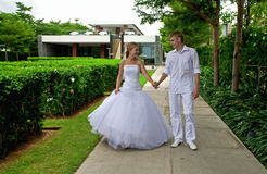 Just married couple in a tropical park Royalty Free Stock Photography