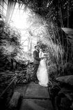 Just married couple under bamboos at jungle Stock Photo