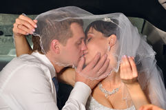 Just married couple under bridal veil Stock Images