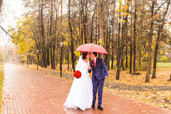 Just married couple under umbrella walking on road at park Stock Photo