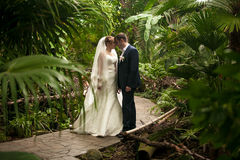 Just married couple walking on path at jungles Royalty Free Stock Image