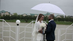 Just married couple walking in rainy day at terrace with umbrella stock video footage