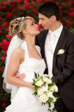 Just married couple wants kisses Stock Photo