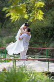 Just married in day of them wedding Stock Photography