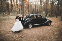 Just married happy couple in the retro car on their wedding.  Royalty Free Stock Image