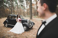 Just married happy couple in the retro car on their wedding.  Stock Photos