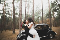 Just married happy couple in the retro car on their wedding.  Royalty Free Stock Images