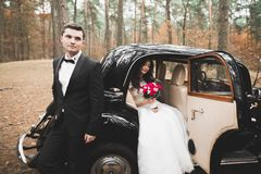 Just married happy couple in the retro car on their wedding Stock Images
