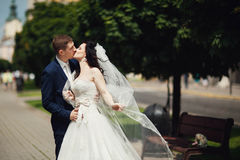 Just married kissing on city street. Blurred background Stock Images
