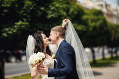 Just married kissing in park. Blurred background Royalty Free Stock Photos