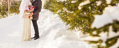 Just married muslim couple in winter nature Stock Image