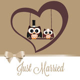 Just married owls Royalty Free Stock Photo