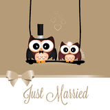 Just married owls Royalty Free Stock Photos