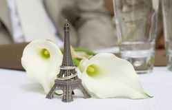 Just married in Paris Royalty Free Stock Images