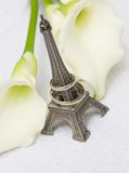 Just married in Paris Royalty Free Stock Image