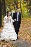 Just married in the park Royalty Free Stock Photos